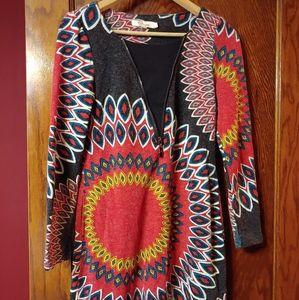 Aryeh sweater dress/tunic